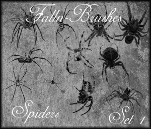 Spider_Brushes_Set_1_by_Falln_Brushes